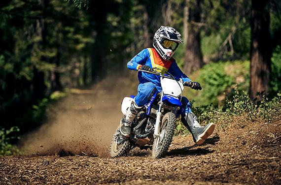 Yamaha-TT-R110E-2