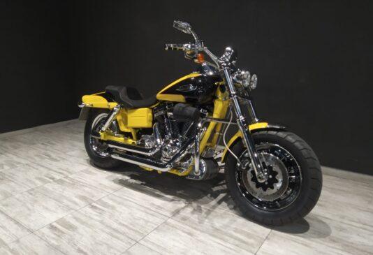 Harley Davidson Screamin Eagle 110